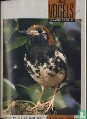 Onze Vogels 6 - Bild 1