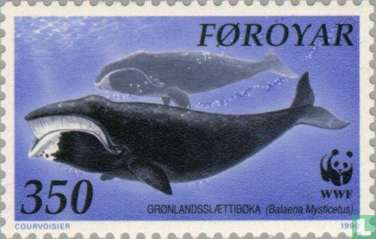 Faeröer - Natuurbescherming