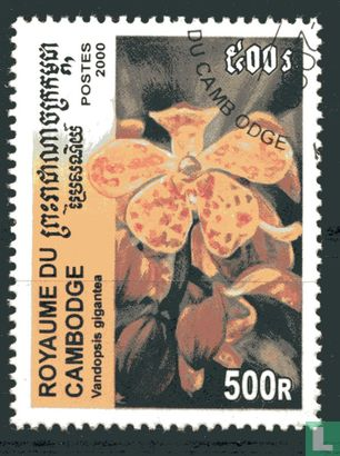 Cambodja - Orchideeën