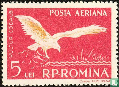 Roemenië [ROU] - Fauna van de Donaudelta