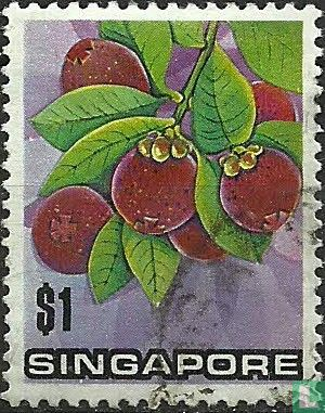 Singapore - Flowers and fruit