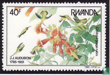 Rwanda - Vogels