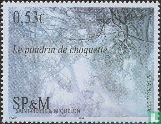 Saint-Pierre en Miquelon - Het fenomeen van choquette