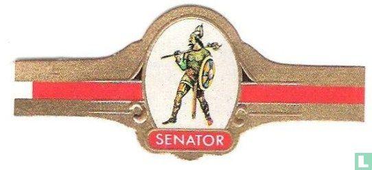 Senator (Mignot & De Block) - Noorwegen Viking ± 1050