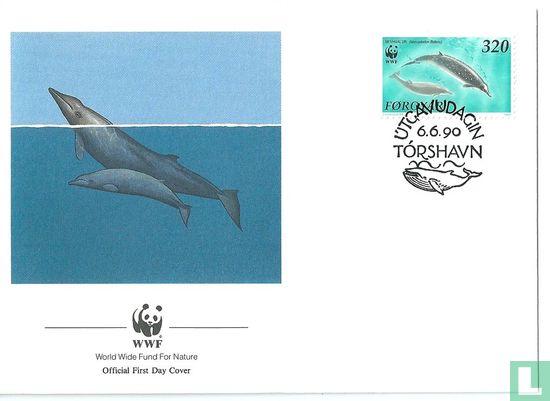 Faeröer - WWF - Walvissen van de Noordelijke Atlantische Oceaan