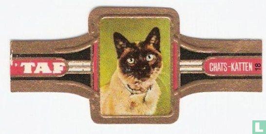 Taf - Katten 18