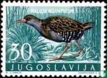 Joegoslavië - Joegoslavische fauna - vogels
