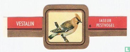 Vestalin - Pestvogel