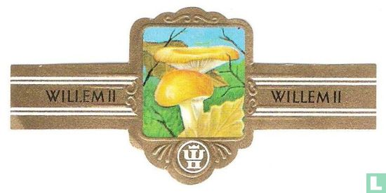 Willem II - Gele gladrandrussula (Russula ochroleuca)