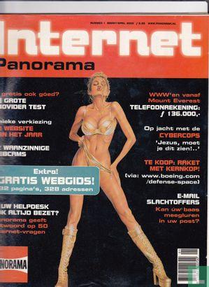 Internet Panorama 1