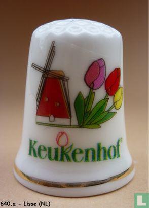 Keukenhof - 2008 - Image 1