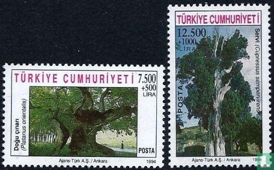 Türkei - Monumentale Bäume