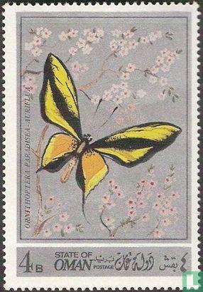 Fantasieland - Vlinders