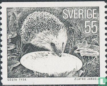 Schweden [SWE] - Igel