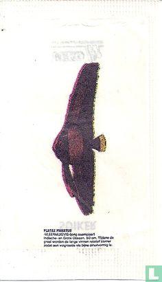 Beutel - Vleermuisvis