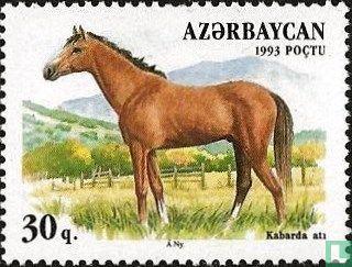 Azerbaijan - Horses