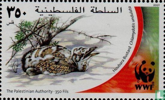 Palestina - WWF - Kraagtrap