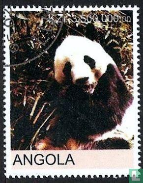 Angola [AGO] - Panda's