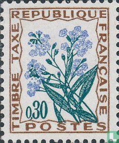 France [FRA] - Flowers