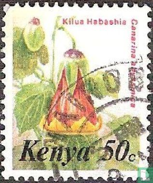 Kenya - Flowers