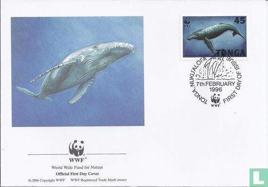 Tonga - WWF - Bultrug