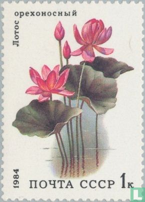 Union soviétique - Plantes aquatiques