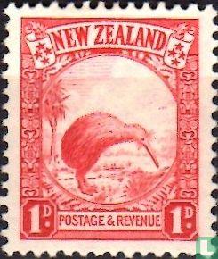 Neuseeland - Kiwi
