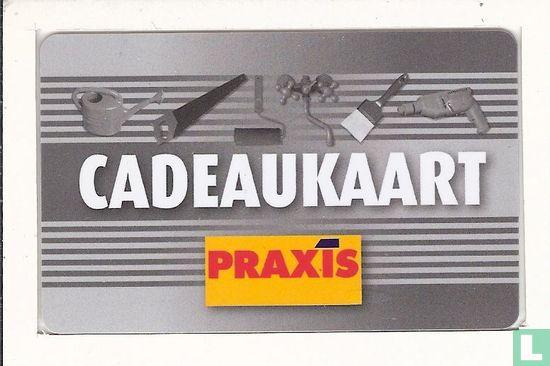 Praxis - Afbeelding 1