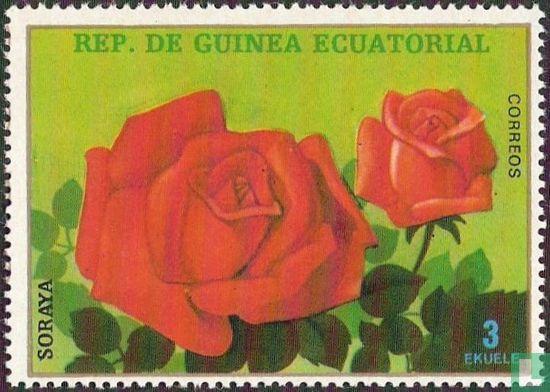 Equatorial Guinea - Rose