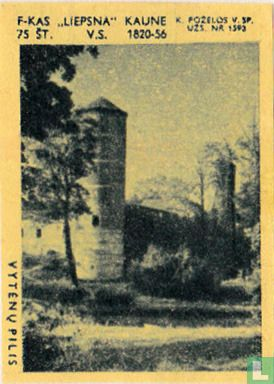 Stadsgezicht Vytenu Pilis