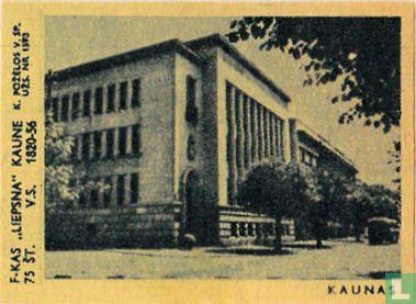 Stadsgezicht Kaunas