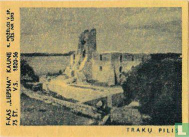 Stadsgezicht Traku Pilis