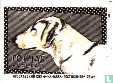 """?OH?A? - """"Russische Hond"""""""