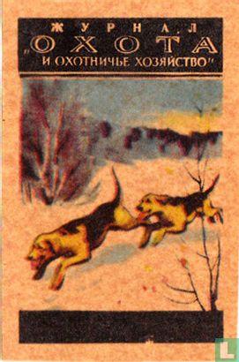 """Jachthonden"""