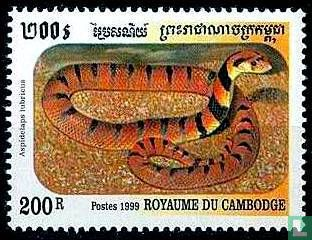 Cambodja - Slangen