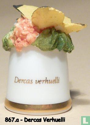 Vlinder - Dercas Verhuelli - Image 1