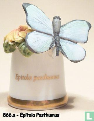 Vlinder - Epitola Posthumus - Image 1