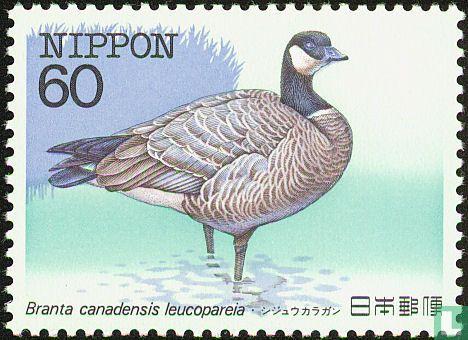 Japan [JPN] - Zeldzame vogels II