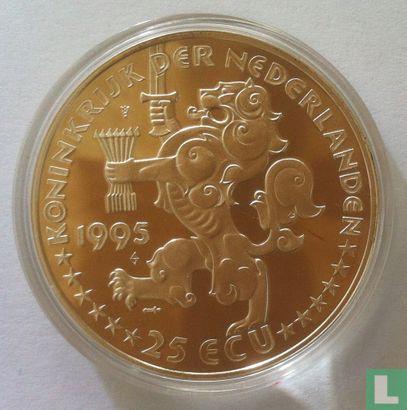 """Nederland 25 ecu 1995 """"Grotius"""" - Afbeelding 1"""