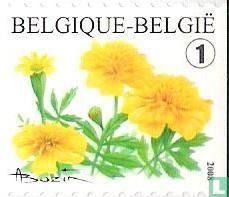 België [BEL] - Bloemen