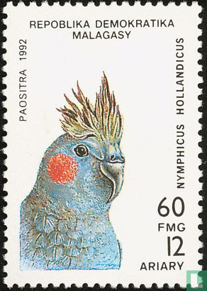 Madagascar - parrots