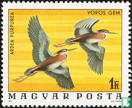 Hongarije - Beschermde vogels
