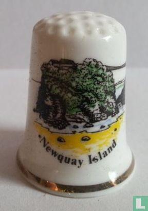 Newquay Island