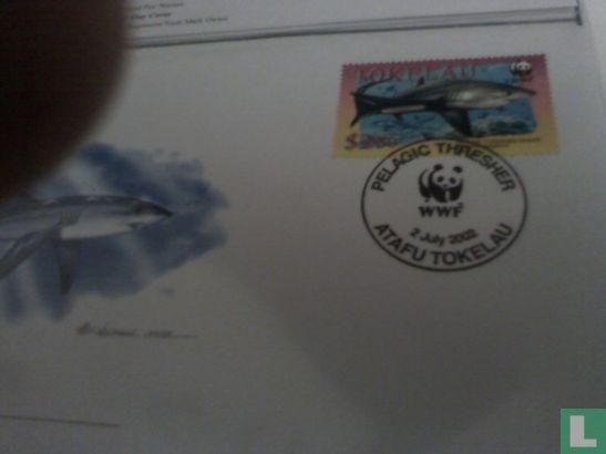 Tokelau - WWF - Pelagische voshaai
