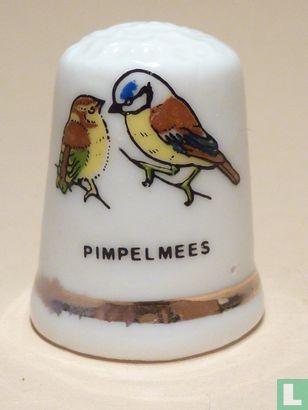 Vogels - Pimpelmezen