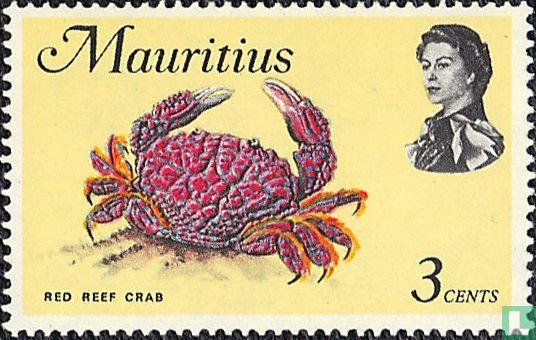Mauritius - Zeedieren