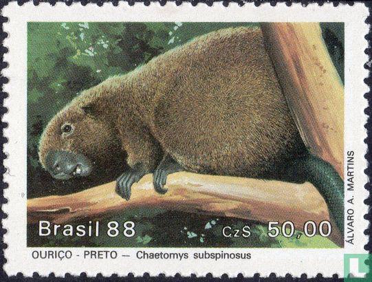 Brazilië [BRA] - Bedreigde diersoorten