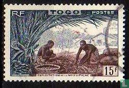 Togo - exploitation beyond palm nuts