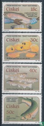 Ciskei - Forellenkwekerijen