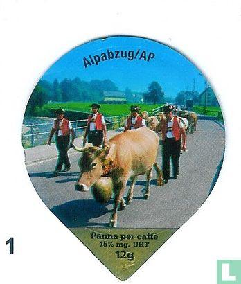 Bilder der Schweiz II
